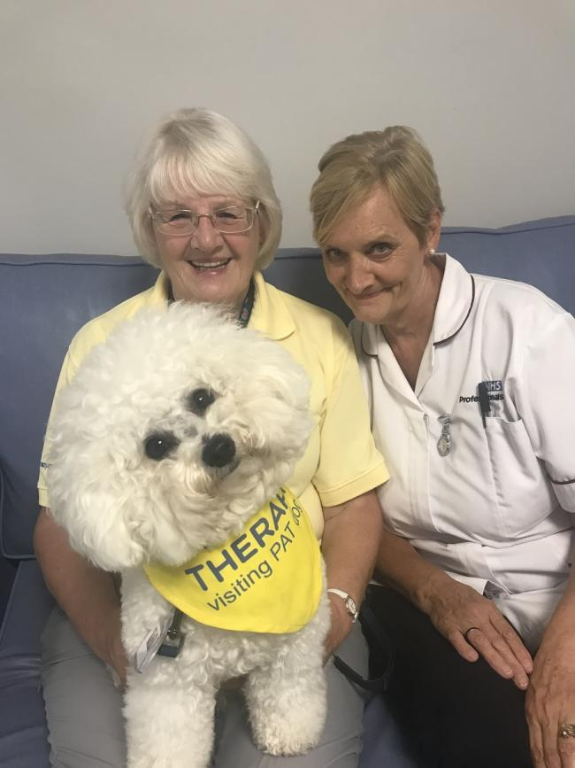Pat Higley, left, and Susan Howard with Meg the dog